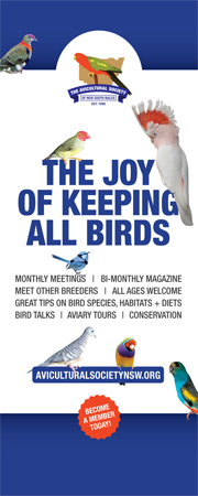 The Joy of Keeping Birds - The Aviculutral Society of NSW (ASNSW - Home Page)