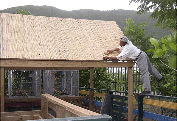 Construction of a shaded walkway to accommodate the zoo's suspended bird cages.
