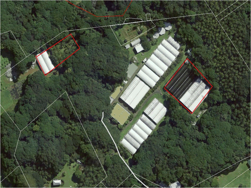 Aerial view of the Kentia Palm Nursery on Lord Howe Island