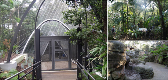 Taronga's walk through aviaries